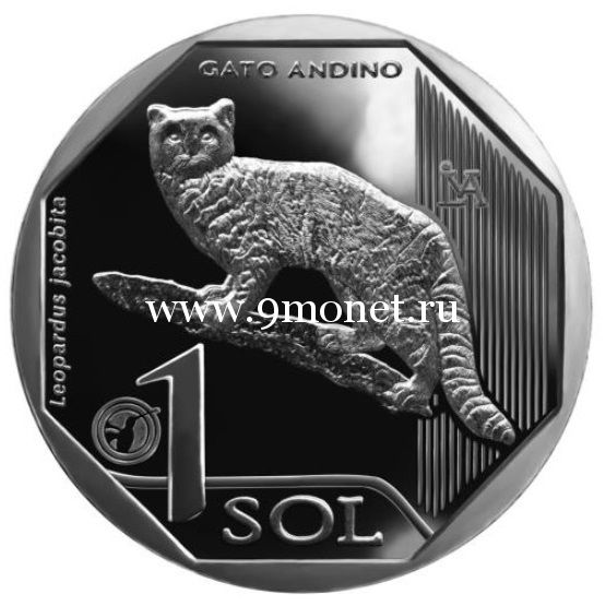 Перу 1 соль 2019 года Андский кот.