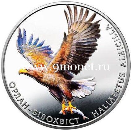 Украина 2 гривны 2019 года Орлан-белохвост.
