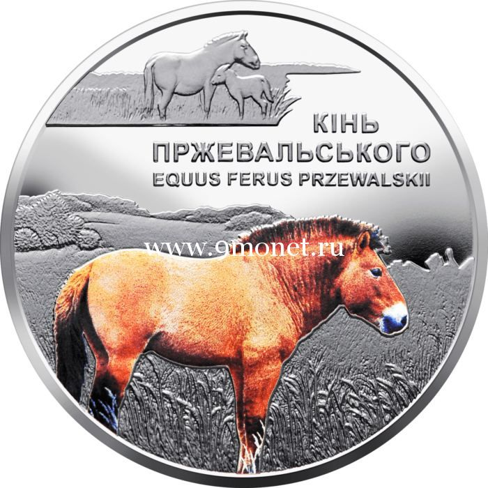 Украина 5 гривен 2021 года Лошадь Пржевальского.