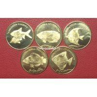 Малуку набор 5 монет 5 рупий 2019 года Рыбки.