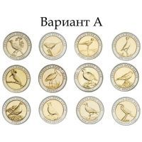 Турция набор 24 монеты 1 куруш 2019 года Птицы Анатолии (вариант А)